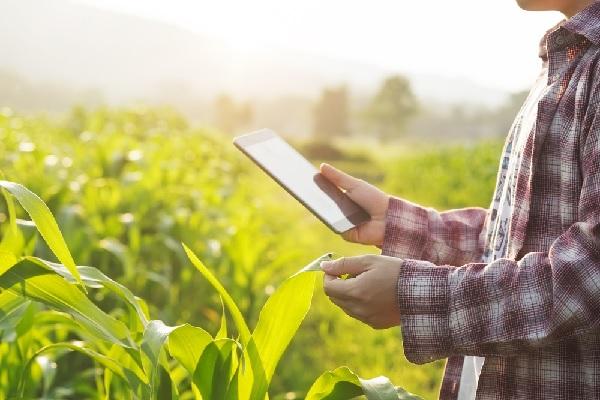 travailleurs-independants-agricoles-du-nouveau-pour-vos-declarations-de-revenus-