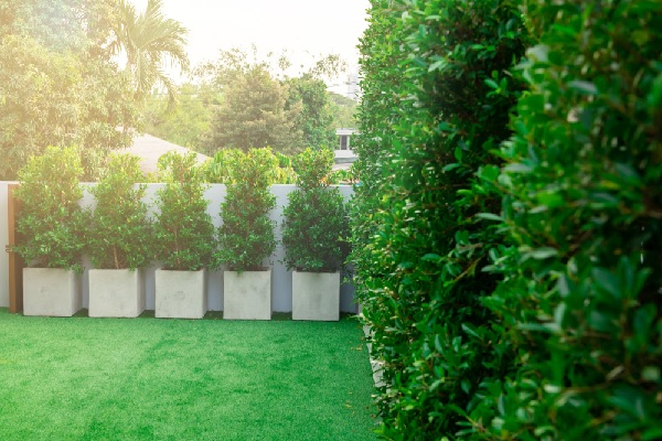 copropriete-:-la-suppression-(il)licite-d'une-jardiniere-?
